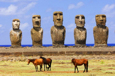 HMS0625838 Chile, Easter Island (Rapa Nui), site listed as World Heritage by UNESCO, Ahu Tongariki, wild horses in front of the Moai statues