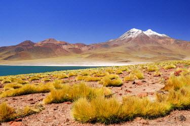 HMS0631576 Chile, Antofagasta Region, Altiplano, Atacama Desert, Los Flamencos National Reserve, Laguna Miscanti (4200 m) and Miniques in the Andes