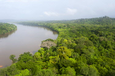 HMS2104775 France, French Guiana, Parc Amazonien de Guyane (Guiana Amazonian Park), Maripasoula, Amazon rainforest, overview of the Lawa River becoming downstream the Maroni river (aerial view)