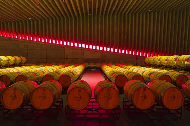 SPA6494AW Spain, Burgos, Gumiel de Izan. The Barrel Room in Bodegas Portia, a modern Ribera Del Duero winery designed by Norman Foster architects.