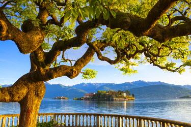 IT04365 The idyllic Isola dei Pescatori & Isola Bella,  Borromean Islands, Lake Maggiore, Piedmont, Italy