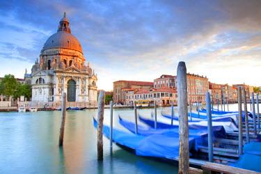 ITA4652 Italy, Veneto, Venice. Gondolas moored on the Gran Canal overlooking Santa Maria della Salute.