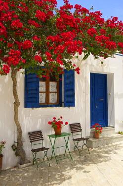 GRE1042AW Tavern in Lefkes, Paros Island, Cyclades, Greece