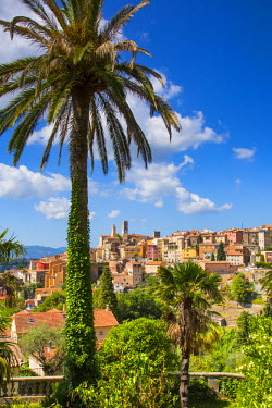 FR02598 Grasse, Alpes-Maritimes, Provence-Alpes-Cote D'Azur, French Riviera, France