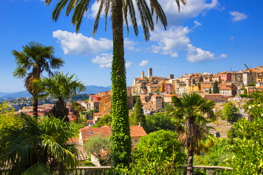 FR02599 Grasse, Alpes-Maritimes, Provence-Alpes-Cote D'Azur, French Riviera, France