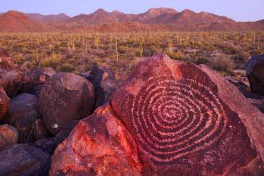 USA10110AW USA, Arizona, Tucson, Sonoran desert, Saguaro National Park, Ancient Petroglyph at dusk