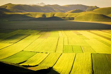 ITA4752AW Piana Grande, Castelluccio di Norcia, Umbria, Italy. valley landscape, Castelluccio di Norcia, Umbria, Italy. Terrace field landscape