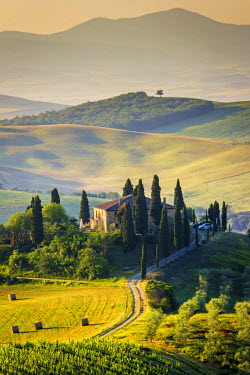 ITA4756AW Val d'Orcia, Tuscany, Italy. A lonely farmhouse with cypress and olive trees, rolling hills.