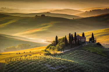 ITA4762AW Val d'Orcia, Tuscany, Italy. A lonely farmhouse with cypress and olive trees, rolling hills.