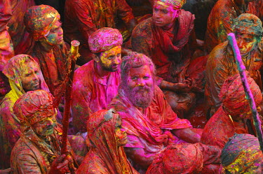 HMS0611339 India, Uttar Pradesh state, Holi festival, Colour and spring festival celebrating the love between Krishna and Radha