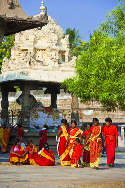 HMS0818169 India, Tamil Nadu State, Kanchipuram, Ekambaranathar temple (or Ekambareswarar) dedicated to Shiva