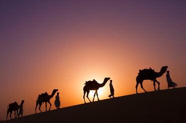 HMS1612689 India, Rajasthan state, Jaisalmer, Rajput nomads with their camel caravan in the Thar desert