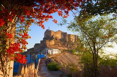 HMS1612712 India, Rajasthan state, Jodhpur, the Mehrangarh Fort