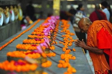 HMS1899877 India, Bihar state, Bodh Gaya, listed as World Heritage by UNESCO, Mahabodhi Temple Complex (Great Awakening Temple), Buddhist temple where Siddhartha Gautama, the Buddha, attained enlightenment, monk...