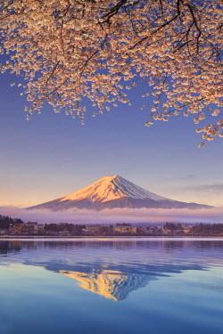 JP03569 Japan, Yamanashi Prefecture, Kawaguchi Ko Lake and Mt Fuji