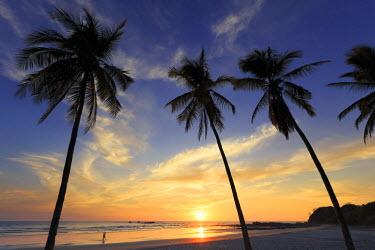 CS02227 Costa Rica, Guanacaste, Nicoya Peninsula, Nosara, Playa Guiones