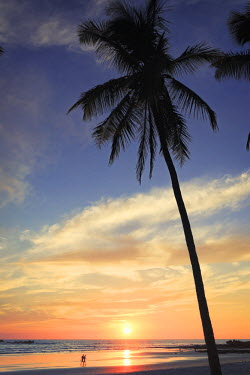 CS02228 Costa Rica, Guanacaste, Nicoya Peninsula, Nosara, Playa Guiones