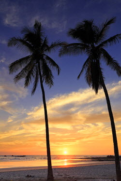 CS02229 Costa Rica, Guanacaste, Nicoya Peninsula, Nosara, Playa Guiones
