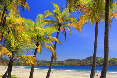 CS02241 Costa Rica, Guanacaste, Nicoya Peninsula, Nosara, Playa Carillo
