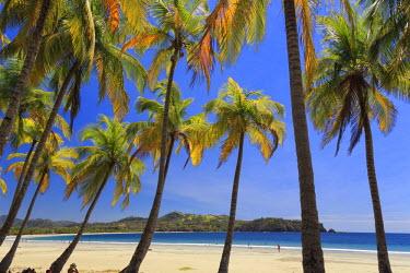 CS02242 Costa Rica, Guanacaste, Nicoya Peninsula, Nosara, Playa Carillo