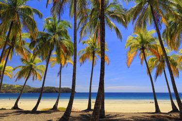 CS02243 Costa Rica, Guanacaste, Nicoya Peninsula, Nosara, Playa Carillo