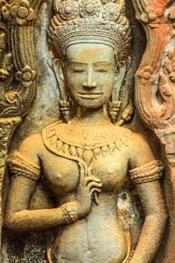 CM02064 Cambodia, Temples of Angkor (UNESCO site), Ta Prohm