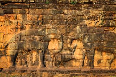 CM02088 Cambodia, Temples of Angkor (UNESCO site), Angkor Thom, Elephant Terrace