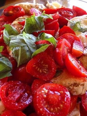 ITA4859 Simple Italian salad of tomatoes, fresh basil leaves and mozzarella cheese, Umbria, Italy.