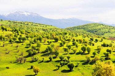 TUR0701 Turkey, Eastern Anatolia, scenery near Nemrut Dagi (Mount Nemrut), UNESCO site