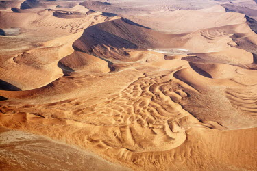 CLKRM5300 The Namib is an immense expanse of relentlessly moving gravel plains and dunes of all shapes and sizes that stretch along the entire coastline. The most widespread and dominant type of desert sand dun...