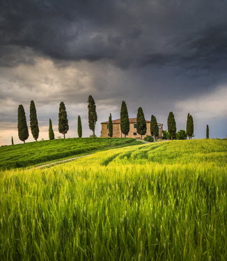 CLKST21239 San Quirico d'Orcia, Tuscany, Italy. Farmhouse at sunset.