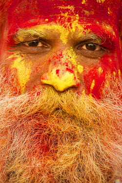 CLKAD10477 Portrait of a Sadhu, face-coloured, during the Holi Festival. (Nandgaon, India)