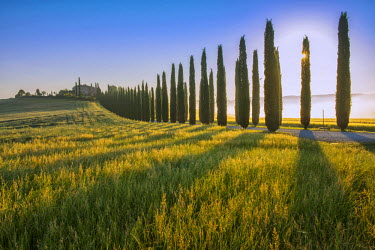 ITA4904AW Europe, Italy, Tuscany, Toscana, Siena, The Val d�Orcia, landscape