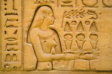 HMS0239010 Egypt, Upper Egypt, Nile Valley, Edfu, temple dedicated to Horus God