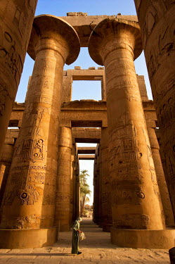 HMS0309360 Egypt, Upper Egypt, Nile Valley, Luxor, Karnak listed as World Heritage by UNESCO, temple dedicated to Amon God, the hypostyle room with 134 columns