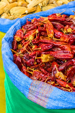 HMS2081823 Morocco, High Atlas, Marrakech, imperial city, medina listed as World Heritage by UNESCO, spices Planet herbalism, dried peppers