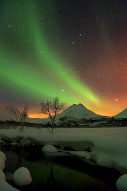 NIS57820 Northern light (Aurora borealis) over a small creek, Norway, Troms, Tromso, Nakkevatnet