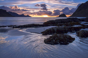 NIS61084 Beach with boulders and sea weed at sunset on a stormy evening, Norway, Nordland, Lofoten Islands