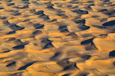 NIS61438 Patterns in the dunes of the Namib desert, Namibia, Namib desert