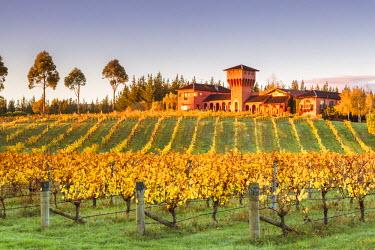 NZ9008AW Highfield estate winery and vineyards, Waihopai Valley, Blenheim, Marlborough, South Island, New Zealand