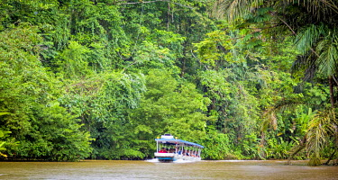 CR33110AW Tortuguero National Park, Costa Rica, boat full of tourists in the canals