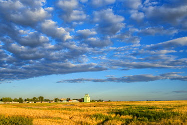 CAN2808AW Canada, Alberta, Stavely, Prairie Landscape