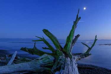 CAN2889AW Canada, British Columbia, Vancouver Island, Juan DeFuca Straight,  French Beach,