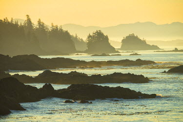 CAN2932AW Canada, British Columbia Vancouver Island, Ucluelet, West Coast
