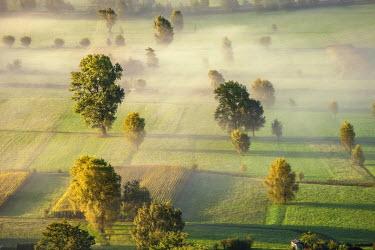 CLKRG17132 Fog in the fields at Valtellina, Lombardy, Italy