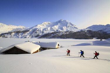 CLKRM18430 Hikers on snowshoes, Spluga, Maloja Pass. Engadine. Switzerland. Europe