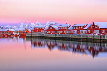 CLKRM24615 Pink sunset over the typical red houses reflected in the sea. Svollvaer Lofoten Islands Norway Europe
