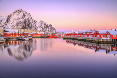 CLKRM24616 Pink sunset over the typical red houses reflected in the sea. Svollvaer Lofoten Islands Norway Europe