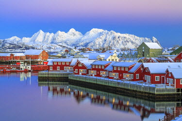 CLKRM24618 Pink sunset over the typical red houses reflected in the sea. Svollvaer Lofoten Islands Norway Europe