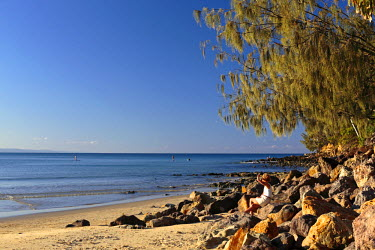 AUS2096 A lone woman sits on a sunny beach beneath a casuarina tree at Noosa on the Sunshine Coast, Queensland, Australia, with a stand-up paddleboarder and surfers in the background